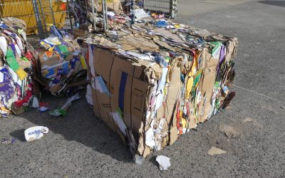 5 Reasons Why Cardboard Recycling Is Important