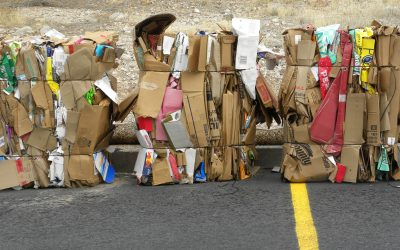 Cardboard Recycling: Where Does It End Up?