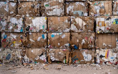 Waste Management Tips For Retail Stores And Supermarkets