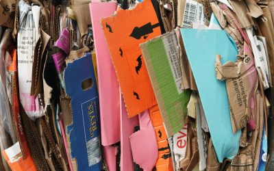10 Recycling Facts Your Business Needs To Know